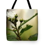 Blackberry Vine Flower Tote Bag