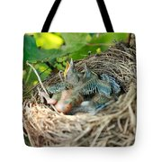 Blackbird Nest Tote Bag