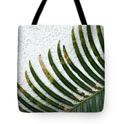 Bladed Leaf Against Stucco Wall Tote Bag