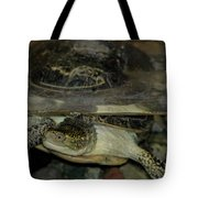 Blandings Swimming Turtle Tote Bag