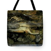 Blandings Turtle Tote Bag