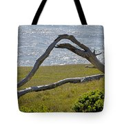 Bleached Wood And Diamond Waves Tote Bag