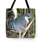 Bleeding Heart Pigeon Tote Bag