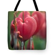 Bleeding Hearts Tote Bag