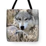 Blending Wolf  Tote Bag