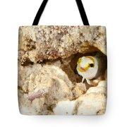 Blenny Tote Bag