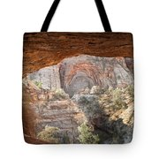 Blind Arch Overlook Tote Bag