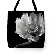 Blind Prickly Pear Cactus In Black And White Tote Bag