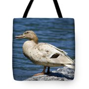 Blond Duck Tote Bag
