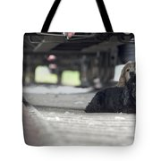 Blonde And Black Dogs Tote Bag