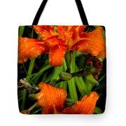 Bloomers Tote Bag
