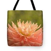 Bloomin' Dahlia Tote Bag