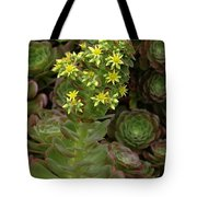 Blooming Succulents Tote Bag