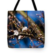 Blooming Tree With White Flowers Tote Bag