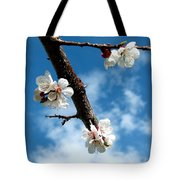 Blossoming Apricot Tote Bag