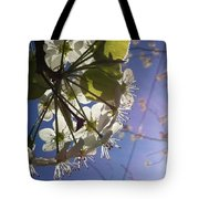 Blossoms In Bloom Tote Bag by Katie Cupcakes