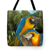 Blue And Gold Macaws Tote Bag