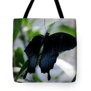 Blue-black Butterfly Tote Bag