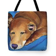 Blue Blanket Tote Bag