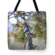 Blue Boy Tote Bag