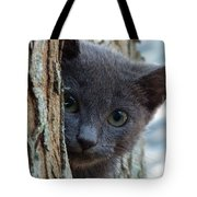 Russian Blue,cat  Tote Bag