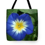 Blue Burst Tote Bag
