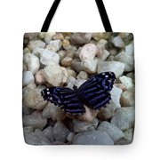 Blue Butterfly On The Rocks Tote Bag