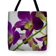Blue Charm X Aridang Blue Orchid - 3 Tote Bag