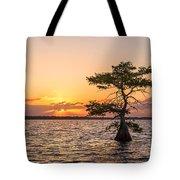 Blue Cypress Lake Sunrise Tote Bag
