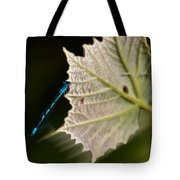 Blue Damsel On Leaf Tote Bag