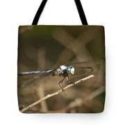 Blue Dasher 8769 Tote Bag