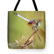 Blue Dasher On Twig Tote Bag