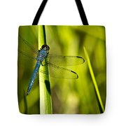 Blue Dragonfly 1 Tote Bag