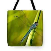 Blue Dragonfly 10 Tote Bag