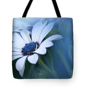 Blue Eyed African Daisy Tote Bag