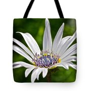 Blue Eyed Daisy Tote Bag
