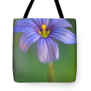 Blue Eyed Grass 2 Tote Bag