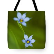 Blue-eyed Grass Wildflower - Sisyrinchium Angustifolium Tote Bag