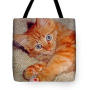 Blue-eyed Kitty Tote Bag