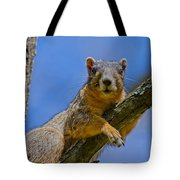 Blue Eyes Tote Bag by Betsy Knapp