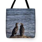 Blue Eyes Kissing Tote Bag