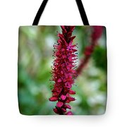 Blue Eyes Pink Petals Tote Bag