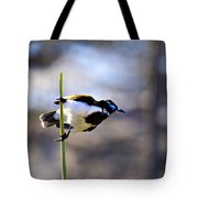 Blue Faced Honey Eater V3 Tote Bag