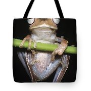 Blue-flanked Tree Frog Tote Bag