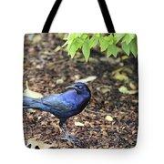 Blue Grackle Tote Bag
