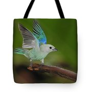 Blue-gray Tanager Tote Bag