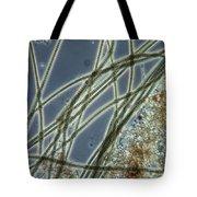 Blue-green Algae Tote Bag