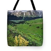 Blue Grouse Pass, Willmore Wilderness Tote Bag