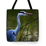 Blue Heron Vondelpark Amsterdam Tote Bag