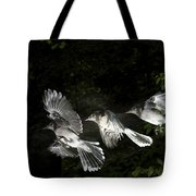 Blue Jay In Flight Tote Bag
